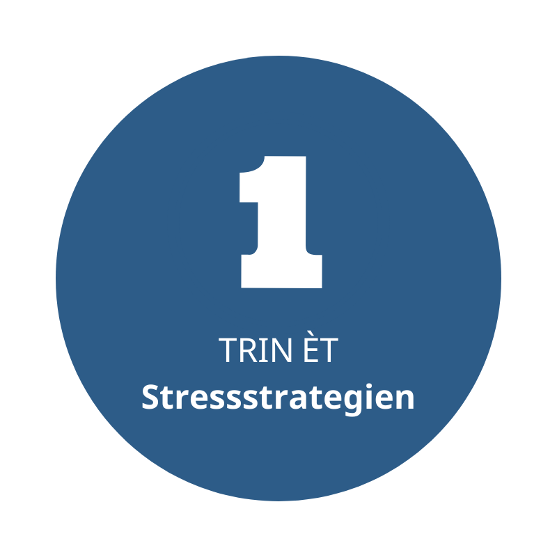 Trin 1 er stressstrategien